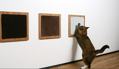 modern cat 002