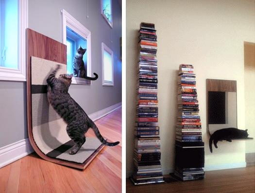 modern cat 006