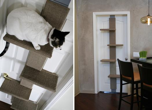 modern cat 2 001