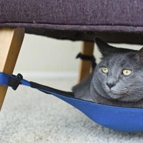 \ idei ingenioase :: hamac pentru pisici\\